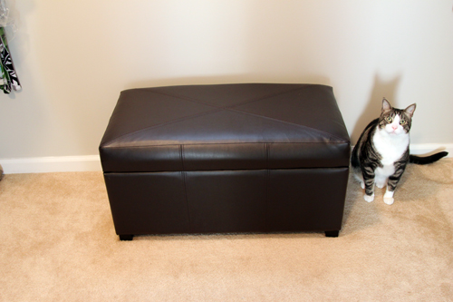 Macky modeling our Target storage ottoman ... - The Lil House That Could - Part 59